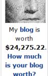 Wert des Blogs