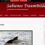 Blog Saibienes.de