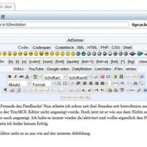 b2evolution visueller Editor