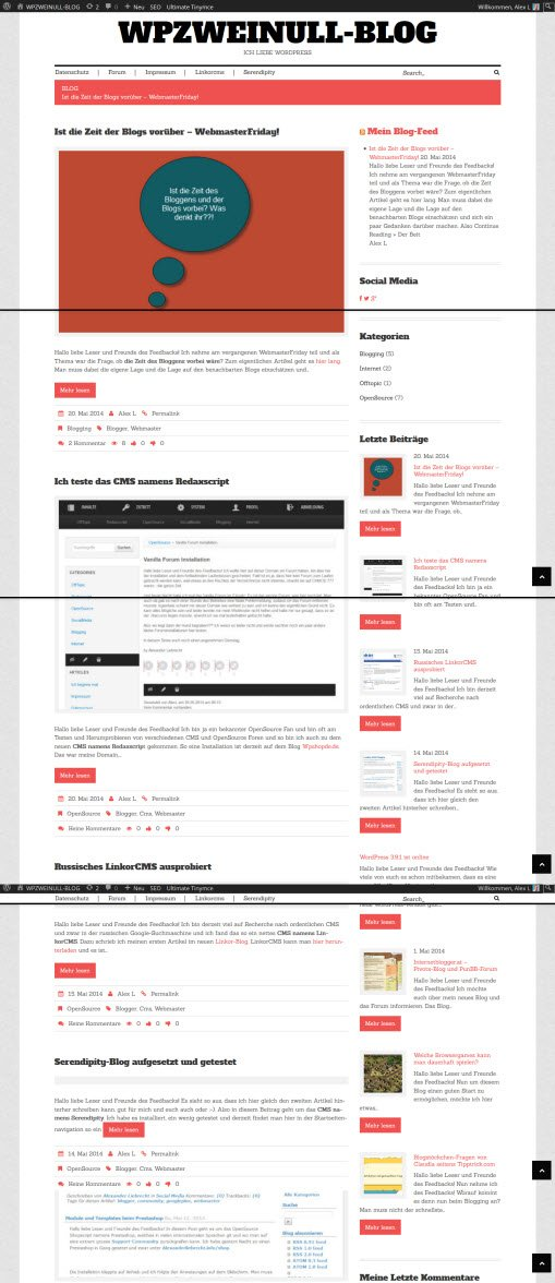 Review eines Premium-WordPress-Themes von TemplateMonster.com/de