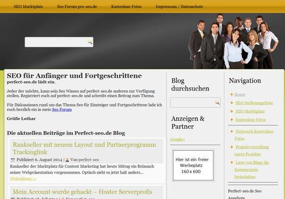 Blog Perfect-seo.de