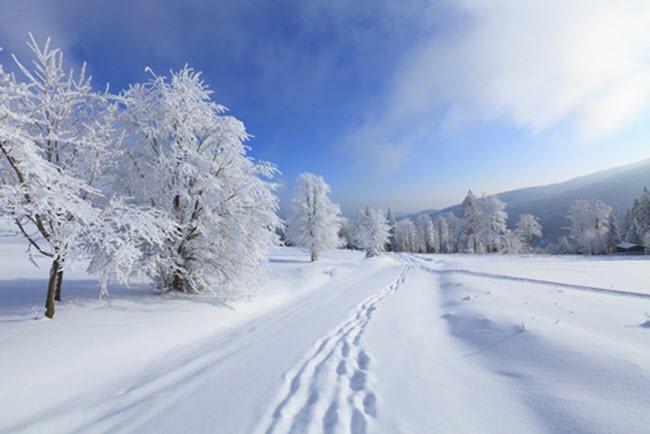 Blogparade: Vorteile und Nachteile der Winterzeit!?