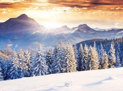 Auswertung der Winter-Blogparade