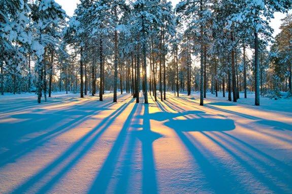 Meine Winterblogparade endet in 3 Tagen – wer möchte noch mitmachen?