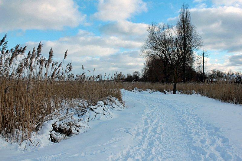 letzte-winter-gruesse2013
