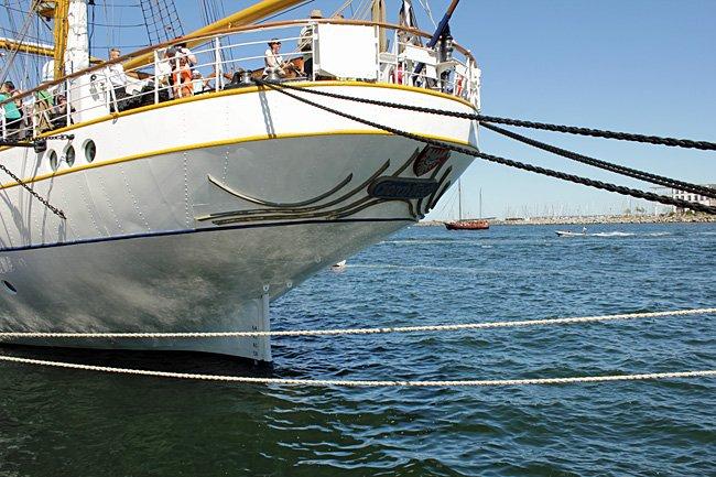 gorch-fock-segelschiff