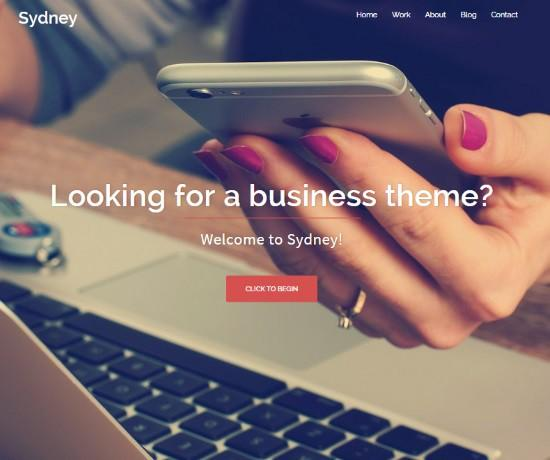 Sydney WordPress Theme