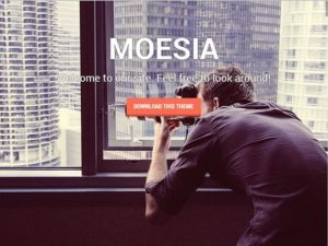 Moesia WordPress Theme