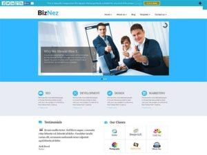 Biznez Lite WordPress Theme