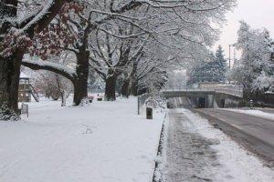 frohe-weihnachten-wünscht-blog-admin-alexander-liebrecht-via-internetblogger-de