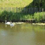 Blog-Kommentare-Runde vom 22.10.2016 mit Internetblogger.de
