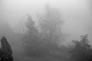 nebel in Rostock im Herbst 2015