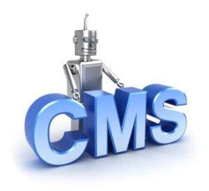 Wordpress-CMS Update