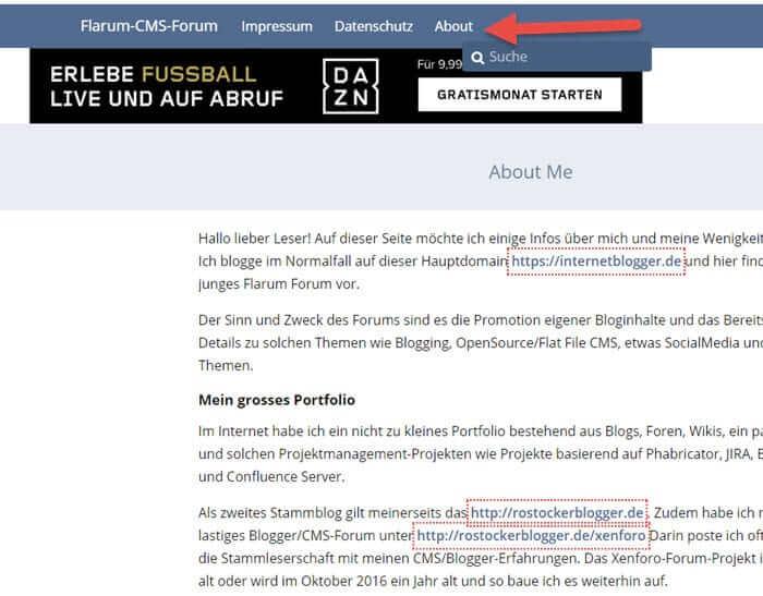 flarum-forum-extension-pages-statische-seiten-im-forum-internetblogger-de
