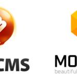 Interview mit Demetrio Fortman von MotoCMS