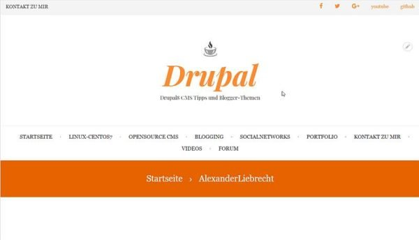 drupal8blogger-internetblogger-de-premium-theme-magazin-plus-im-einsatz