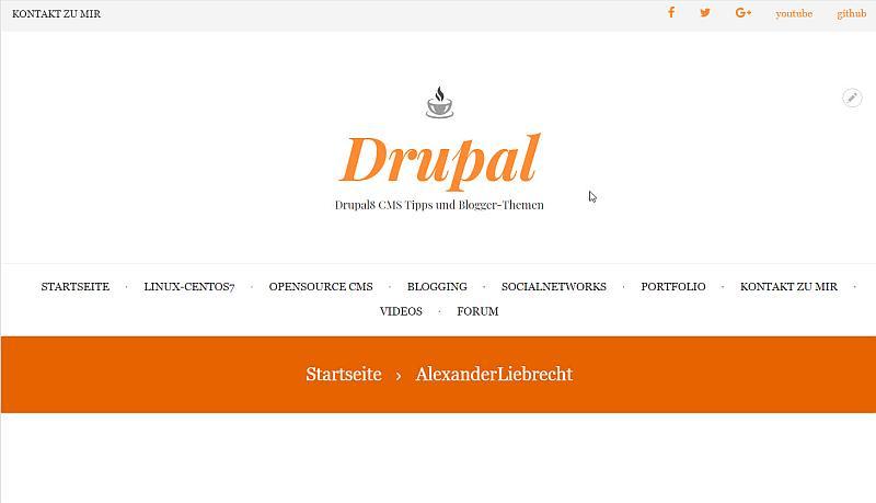 drupal8blogger-internetblogger-de-premium-theme-magazin-plus-im-einsatz001